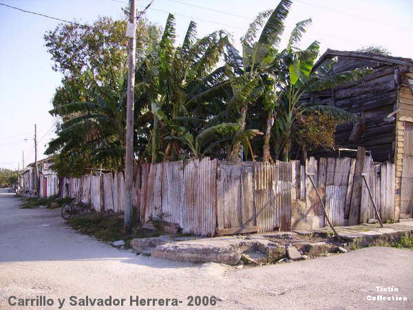 tt-carrillo-salvadorherrera2006.jpg